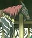 The kitsuryou Shoukei stole from Kyou-ou Shushou